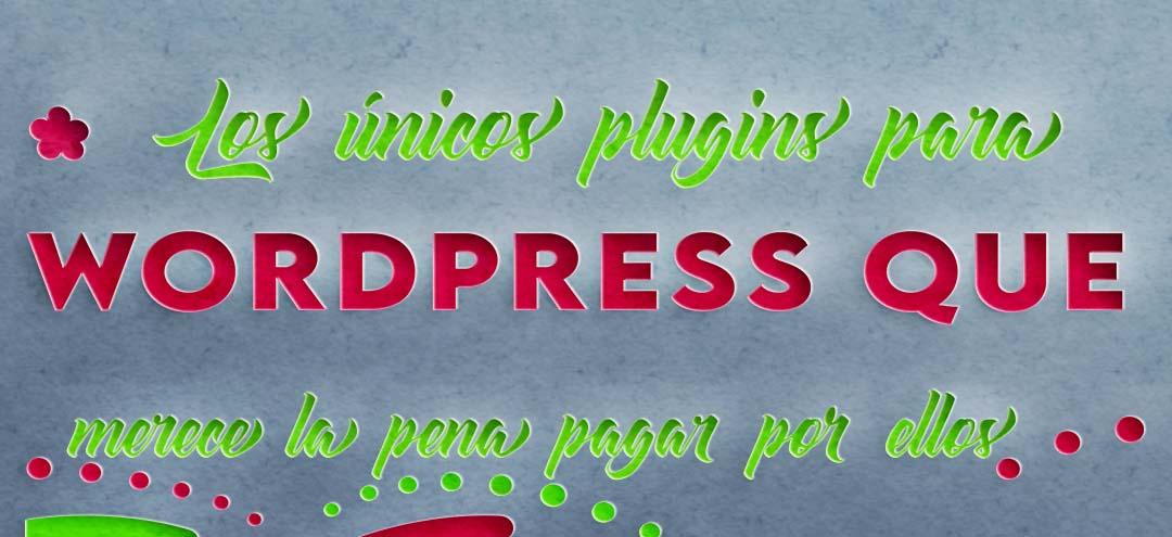 Los-unicos-plugins-para-WordPress-que-merece-la-pena-pagar-por-ellos