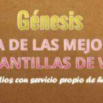 Plantilla Genesis ¿Mejor plantilla para blog?