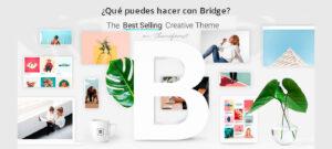 Qué puedes hacer con Bridge